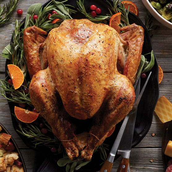 premium turkey for thanksgiving