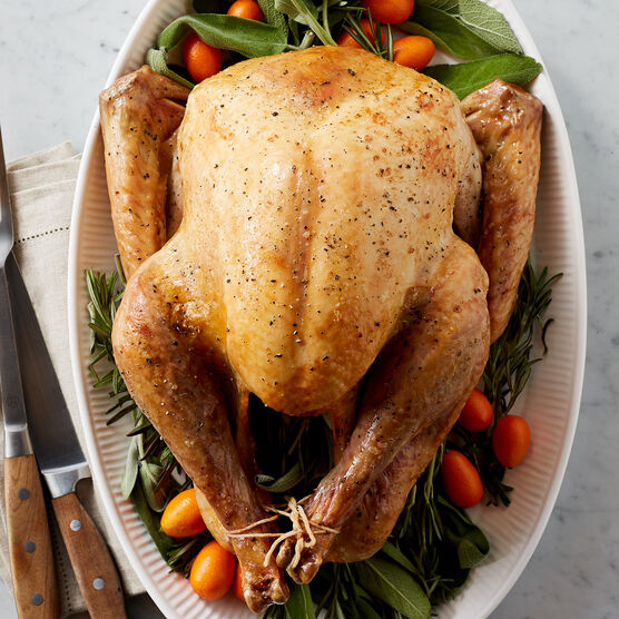 Let our Premium Turkey grace the center of your holiday table. Perfect for Thanksgiving, large family gatherings, or other fall and winter celebrations.