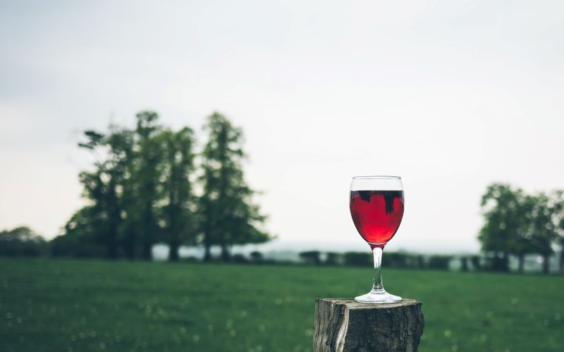 Wine Glass on Tree Stump - 8 of California's Most Flavorful Cities