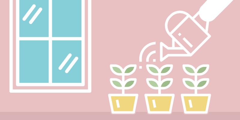 Gardening Blog Indoor Image