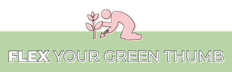 Spring Self Care Blog Green Thumb